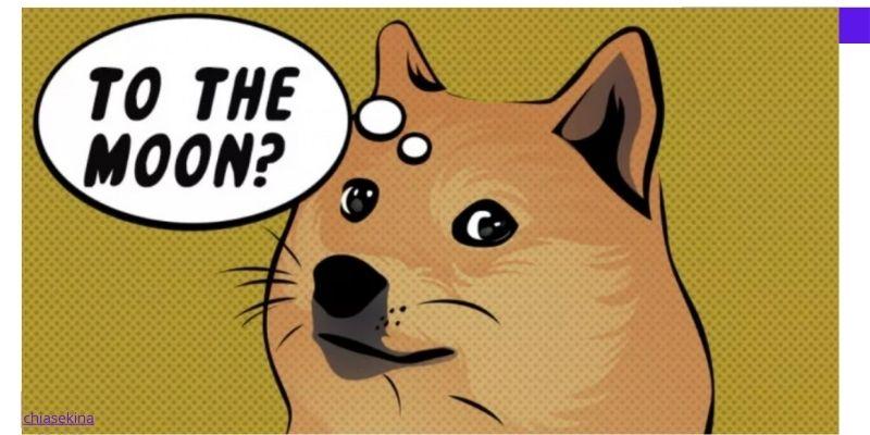 dự án doge coin