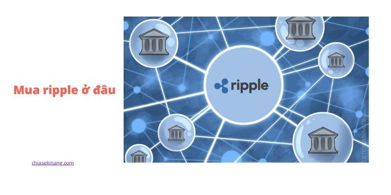 Mua coin Ripple(XRP) ở đâu? Hướng dẫn cách mua bán XRP