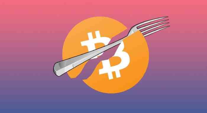 Tìm hiểu Soft fork