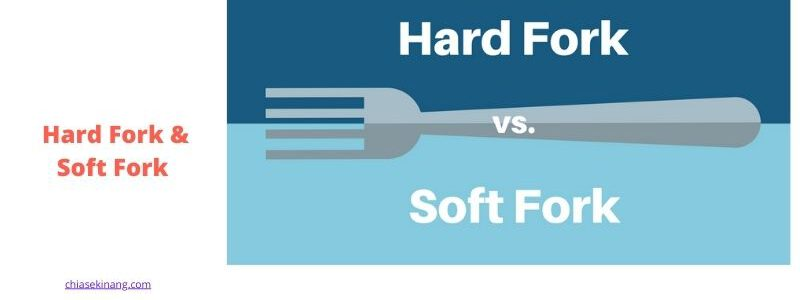 tìm hiểu về fork là gì